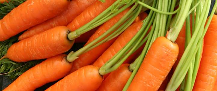 Crunchy-Carrot-Seed-Flapjack_banner
